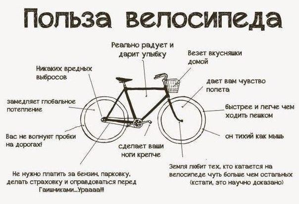 Велосипед лучше авто потому что: