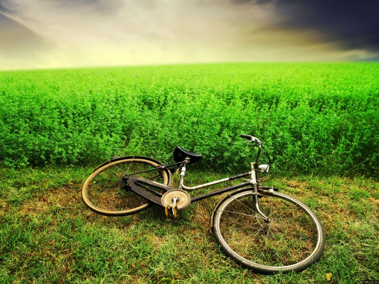 Meadow-and-Bicycle-Wallpaper-PC
