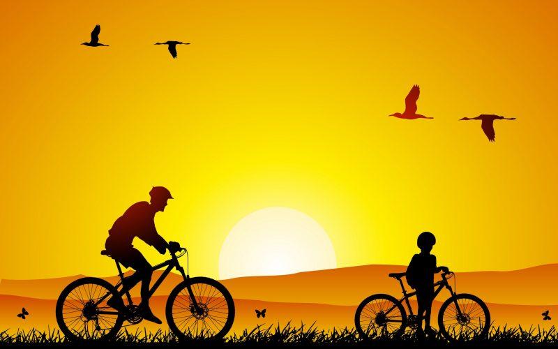 велосипедная обоя, отец и сын, велосипеды