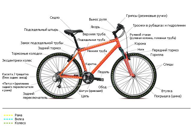 Строение современного спортивного велосипеда