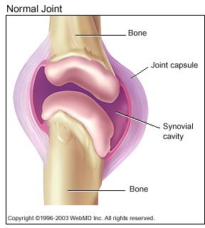 Нормальное колено