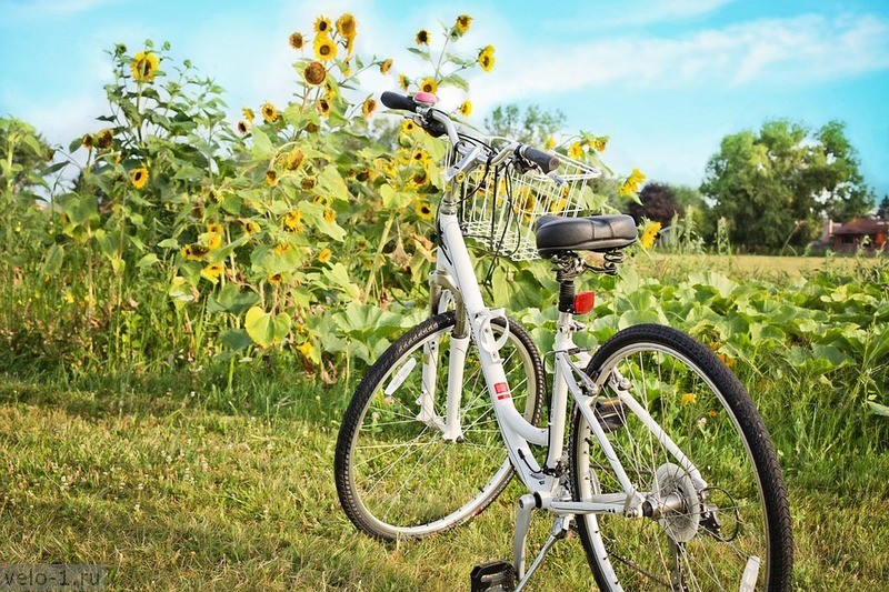bicycle-871265_960_720