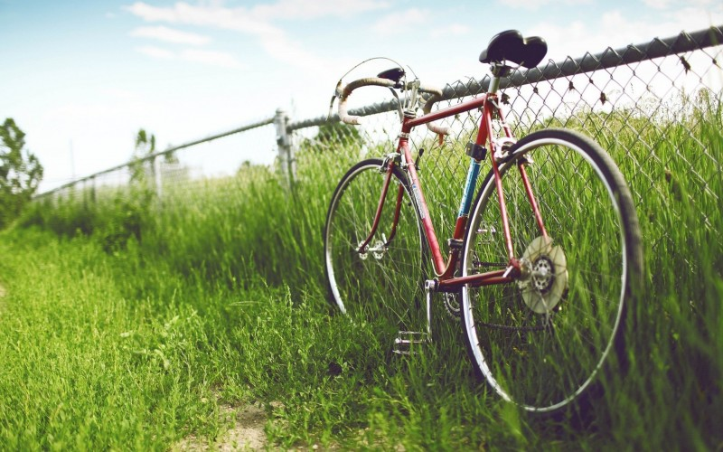bicycle_fence_field_grass_summer_55525_3840x2400