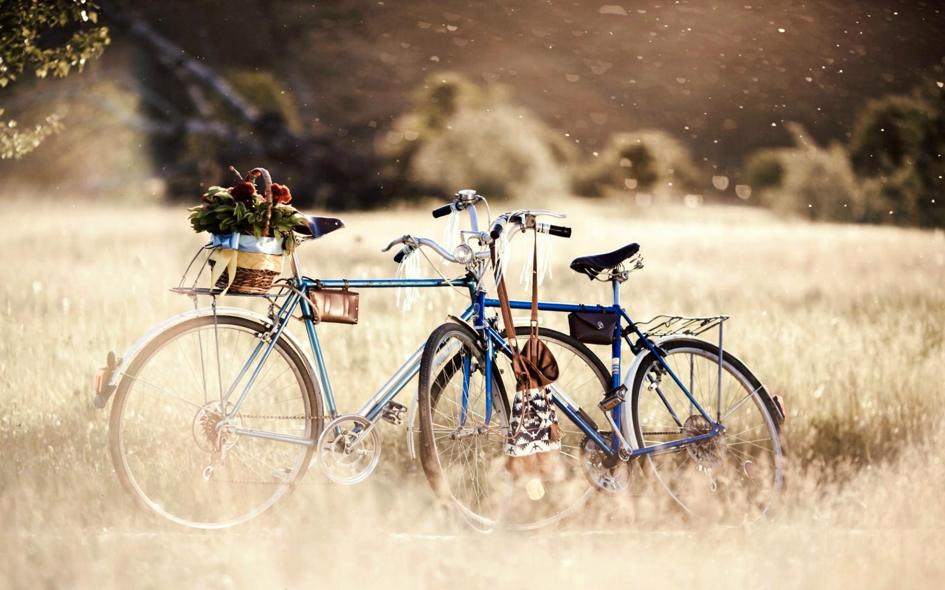 еще картинка два велосипеда ты, придурок, стоял